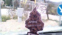 arbre-arrosticini1