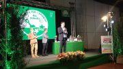 bandiera-verde11
