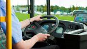 conducente-autobus11