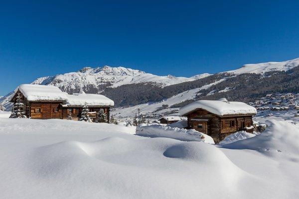 baite neve